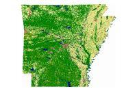 Land Use Land Cover Spring 2004 (raster)