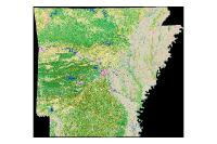 Land Use Land Cover Spring 1999 (raster)