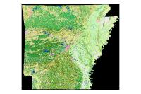 Land Use Land Cover Summer 1999 (raster)
