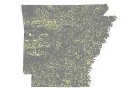 Census Block 2000 (polygon)